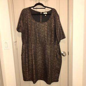 Black and Gold born famous LBD